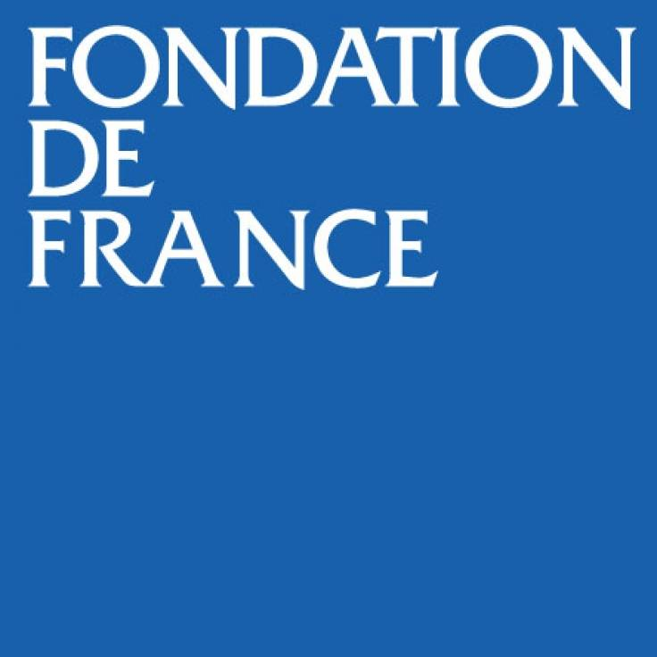 7-Logo Fondation de France - 2cm côté