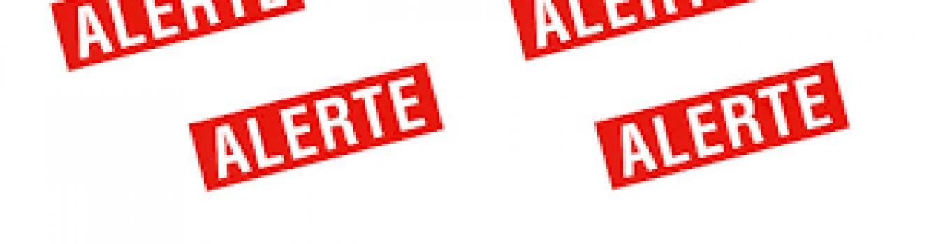 Communiqué de presse Collectif ALERTE : FAIRE DE LA SOLIDARITÉ UNE VRAIE PRIORITÉ !