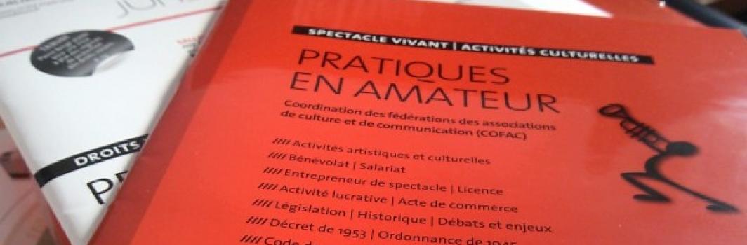 Cofac : Chiffres clés de l'accompagnement des associations artistiques et culturelles par le DLA